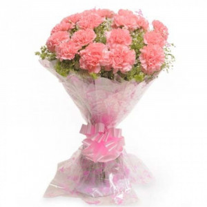 20 Pink Carnation Bunch