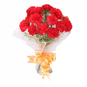 20 Red Carnation Bunch