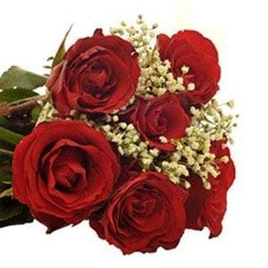 Six Roses Hand Bunch