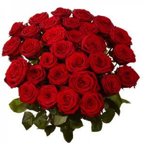 30 Red Rose Bunch